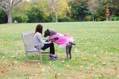 Corso тросточки 9 месяцев mastiff старого итальянский в платье Стоковые Фото