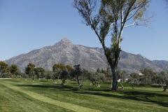 Corso a golf aperto, Marbella di Andalusia Fotografia Stock Libera da Diritti