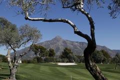 Corso a golf aperto, Marbella di Andalusia Immagini Stock