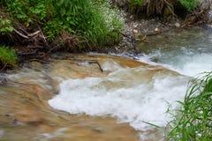 Corso rapido di un fiume della montagna Immagini Stock Libere da Diritti