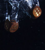 Corta jogado na água imagem de stock