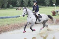 Corta-mato equestre foto de stock royalty free