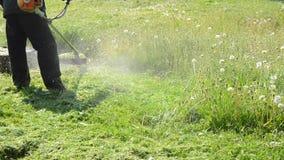 Cortacéspedes de hierba de siega del hombre del primer almacen de video