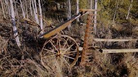Cortacéspedes oxidado, viejo Imagen de archivo libre de regalías
