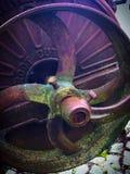 Cortador da raiz da oxidação Fotografia de Stock Royalty Free