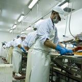 Cortadores dos peixes no trabalho fotografia de stock