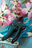 Cortadores e luvas de jardinagem imagens de stock royalty free
