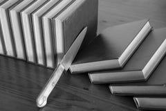 Cortando fatias de livros imagem de stock