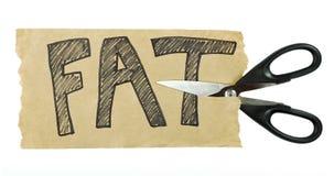 Cortando a gordura Imagem de Stock Royalty Free
