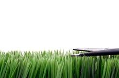 Cortando a grama com tesouras fotografia de stock