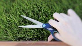 Cortando a grama fresca com um par de tesouras Fotografia de Stock Royalty Free