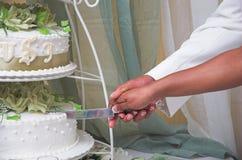 Cortando o bolo fotografia de stock royalty free