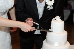 Cortando o bolo de casamento Imagem de Stock Royalty Free