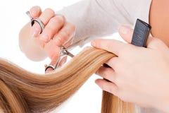 Cortando o cabelo longo Fotos de Stock Royalty Free