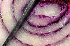 Cortando uma cebola roxa com uma faca do metal fotos de stock royalty free
