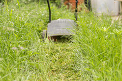 Cortar la hierba Imagen de archivo