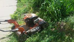 Cortar la hierba verde fresca con el cortacésped metrajes