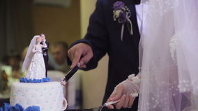 Cortar la torta de boda almacen de video