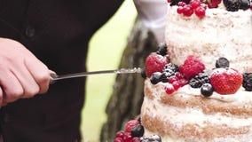 Cortar un pastel de bodas hermoso almacen de metraje de vídeo