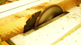 Cortar un pedazo de madera cuadrado con una sierra eléctrica almacen de metraje de vídeo