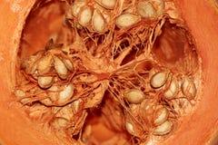 Corte da abóbora aberto com sementes fotografia de stock royalty free