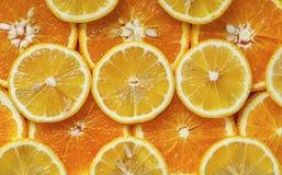 Corte da laranja e do limão em circles2 fotos de stock