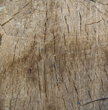 Corte da madeira a criar Fotografia de Stock Royalty Free