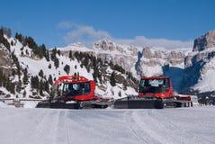 Corte da neve de dois vermelhos fotografia de stock