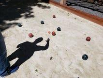 Corte de Bocce con la sombra de un hombre que estudia el juego Foto de archivo