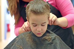 Corte de cabelo Imagem de Stock Royalty Free