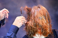Corte de cabelo imagens de stock