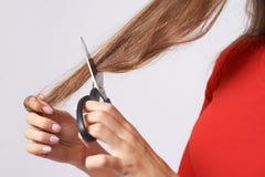 Corte de cabelo com tesouras Cabelo longo Brunette hairdresser foto de stock royalty free