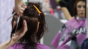 Corte de cabelo das mulheres na barbearia vídeos de arquivo
