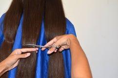 Corte de cabelo no cabelo realmente longo imagem de stock
