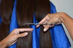 Corte de cabelo no cabelo realmente longo imagens de stock
