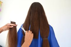 Corte de cabelo no cabelo realmente longo fotografia de stock