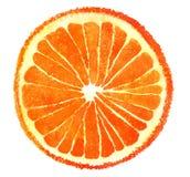 Corte de la naranja de la acuarela libre illustration