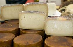 Corte de las ruedas del queso Imagen de archivo