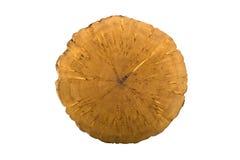 Corte de madeira do registro Fotografia de Stock