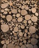 Corte de madeira dos logs Imagem de Stock