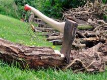 Corte de madera - el hacha se pegó en una hierba de la conexión a la comunicación del árbol Imagen de archivo libre de regalías