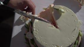 Corte de novia y del novio de la torta de la celebración de la boda almacen de metraje de vídeo
