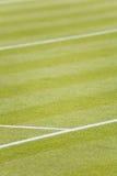 Corte de tênis da grama Imagens de Stock