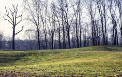 Corte del golf en el parque de Monza Imagen de archivo