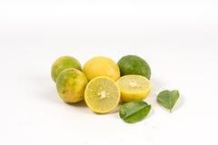 Corte del limón con las hojas Foto de archivo libre de regalías