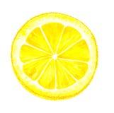 Corte del limón de la acuarela libre illustration