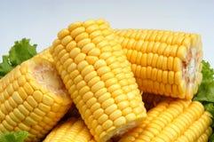 Corte del maíz Imagen de archivo