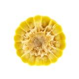 Corte del maíz en la mazorca de Cornstick imagen de archivo