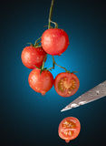 Corte del tomate Imagenes de archivo