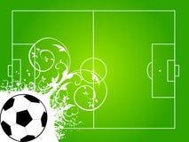 Corte di gioco del calcio Immagini Stock